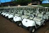 Tropical Golf Carts