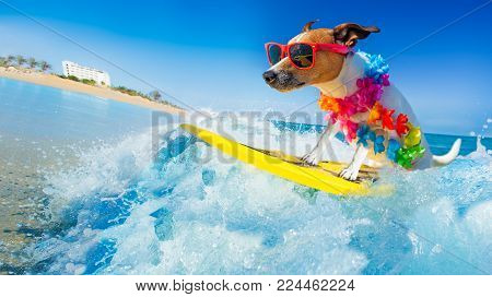 poster of Jack Russell Dog Surfing On A Wave , On Ocean Sea On Summer Vacation Holidays, With Cool Sunglasses