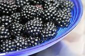 Blackberries In A Blue Glass Dish