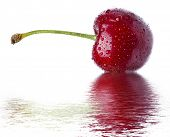 cherry with reflection