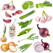 A large collection onion and garlic  isolated over white background