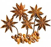 Star anise (badiane) isolated on white background