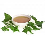 foto of flogging  - Herbal tea with flowers nettle on white background - JPG