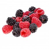 Blackberries ( dewberries) with raspberries on white backgrounds
