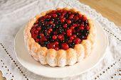 Berry Sponge Cake Angled