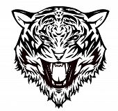 Tiger  cat aggressive (vector)