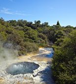 Ngararatuatara, The Cooking Pool
