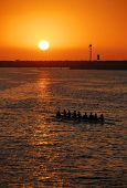 Sunset Rowing Crew