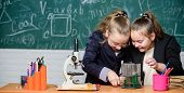 Make Studying Chemistry Interesting. Basic Knowledge Of Chemistry. Pupils Cute Girls Use Test Tubes  poster