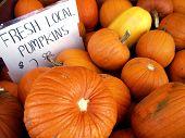 Pumpkins For Sale