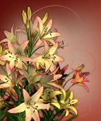 picture of asiatic lily  - a bouquet of lilies in pink and yellow colors - JPG