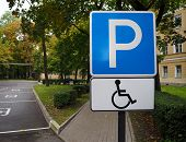Blue Road Sign For Disabled Parking With Autumn Trees On Background. Empty Disabled Parking Spaces.  poster