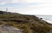 Coastal Scene At North Denmark With Lighthouse