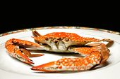 Blue Swimming Crab Steamed Put On White Ceramic Plate, Focus On Face Of Crab And Isolate On Black Ba poster
