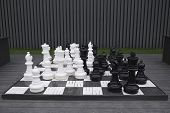 Giant Chess Game. Giant Chess Championship In Park. Outdoors Entertainment poster