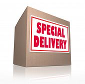 The words Special Delivery on a cardboard box sent through the mail containing merchandise from shop