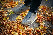 Walk On Pavement In Autumn. Back View On The Feet Of A Man Walking Along The Pavement With Fallen Fo poster