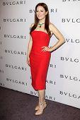 LOS ANGELES - FEB 19:  Julianne Moore arrives at the BVLGARI Celebrates Elizabeth Taylor's Jewelry C