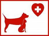 veterinary icon with pet