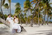 bride and groom sitting on a palm tree on a tropical beach