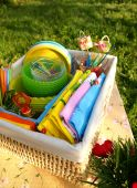 Bright Multicolor Summer Picnic Accessories In A Basket