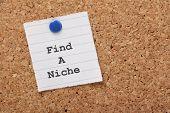 Find A Niche