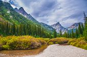 Beautiful Autumn Near Cascade Creek - Grand Teton National Park