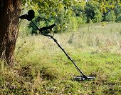 foto of landmines  - Metal Detector In The Forest - JPG