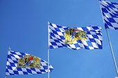 Bavarian Flags