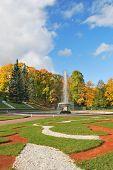 St. Petersburg, Peterhof. Lower Park