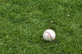 Beisebol na grama