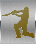 Gold On Silver Cricket Batsman Sport Emblem