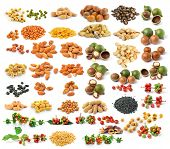 Almond ,macadamia Nuts, Peanut , Black Beans, Cashew Nuts, Green Beans, Soy Beans, Coffee Beans, Wat