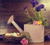 Retro Vintage Happy Easter Or Springtime Scene With Pink Watering Can, Pansy Flowers, And Birds Nest