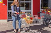 Attractive stylish woman shopping for groceries
