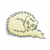 Light Fluffy Cat Vector Illustration