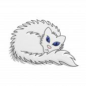 White Fluffy Cat Vector Illustration