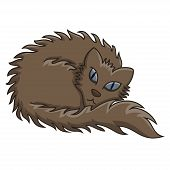 Dark Brown Fluffy Cat Vector Illustration