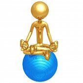 Yoga Pilates Physio Ball