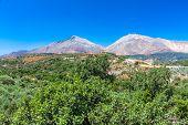 Typical Cretan Landscape