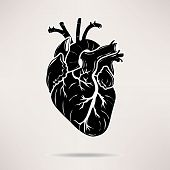 Icon Body heart icon. On the white background. Vector illustration.