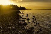 Beach Sunrise Flare