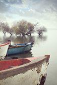 Uluabat Lake In Turkey