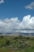 stock photo of colorado high country  - Beautiful spring day in the high desert - JPG