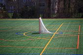 Lacrosse Goal