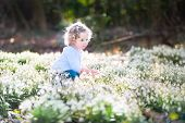 Cute Curly Toddler Girl Playing With First Spring Flowers In A Sunny Park