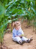 Adorable Little Baby Girl With Curly Hair Sitting In A Field Playing With Corn