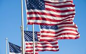 Flags Of The USA