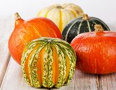 Colorful Pumpkins On Wooden Table