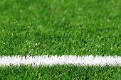 Green Grass Soccer Background